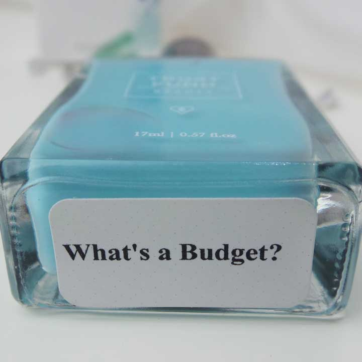 TrustFundBeauty-YuStSoMe-Whats-a-budget-4